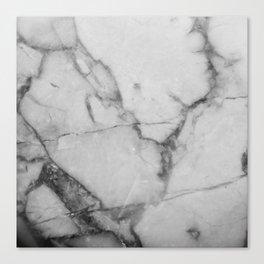White Howlite Canvas Print