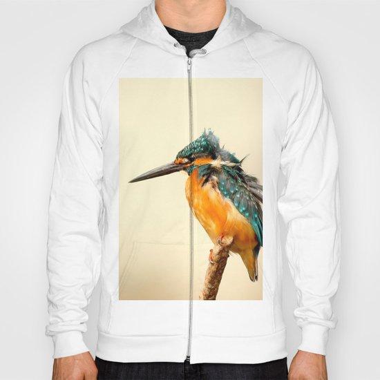 Kingfisher Bird Hoody