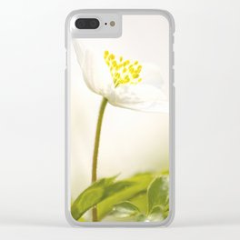 Wood Anemone Blooming in Forest Clear iPhone Case