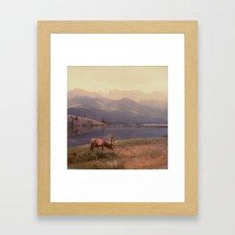Bruce the Elk Framed Art Print