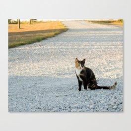 Kountry Kitty Canvas Print