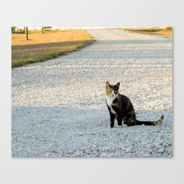 Kountry Kitty Canvas Print