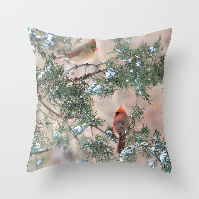 Winter Pair Cardinals Sq Throw Pillow By Nancyacarter Society6