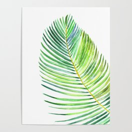 Watercolor palm leaf Poster