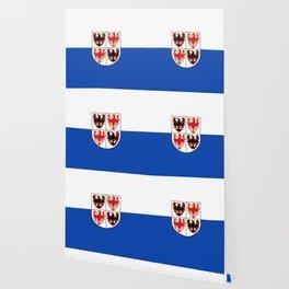 flag of Trentino Wallpaper