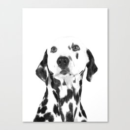 Black and White Dalmatian Canvas Print
