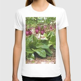 New England Wild Orchid Lady Slipper Flowers T-shirt