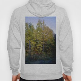 Fall Trees, Autumn Breeze  Hoody