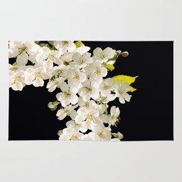 Cherry Flowers On Black Background #decor #society6 #buyart Rug
