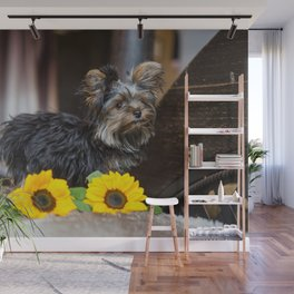 Dog by Darrell Fraser Wall Mural