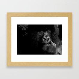 Silver Back Framed Art Print