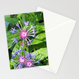 Bright fresh summer flowers Stationery Cards