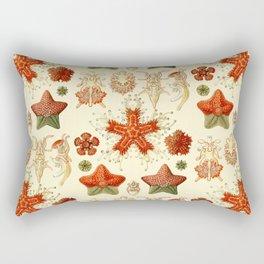 Ernst Haeckel - Scientific Illustration - Asteroidea Rectangular Pillow