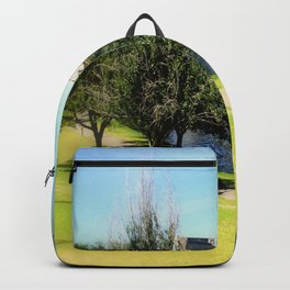Adelaide Torrens River and CBD Backpack