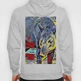Color Kick - Tapir Hoody