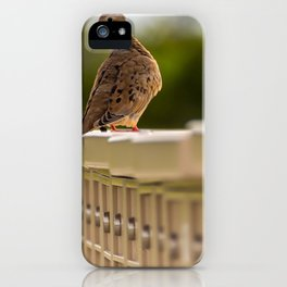 Mourning Dove Mail Call iPhone Case