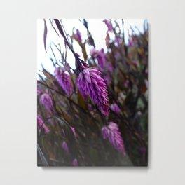 hanging flower Metal Print