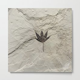 Nature - Leaf in our Past Metal Print