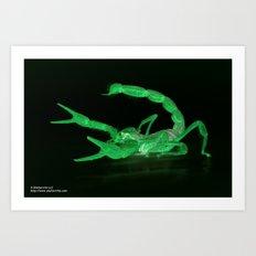 Virdis II Art Print