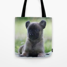 A yellow Shepherd puppy Spok Tote Bag