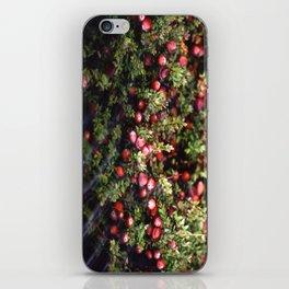 Cranberry Bog  iPhone Skin