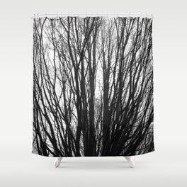 Foggy February Shower Curtain