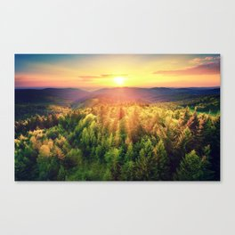 Sunset over forest Canvas Print