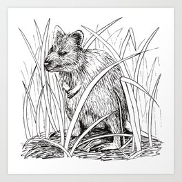 Quirky Quokka - the happiest animal Art Print