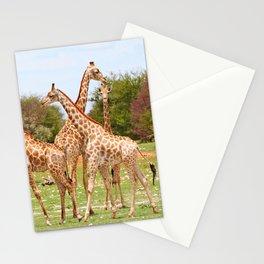 Giraffe family, Africa wildlife Stationery Cards