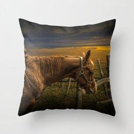 Saddle Horse on the Prairie Throw Pillow
