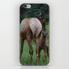 Moms are the best iPhone Skin