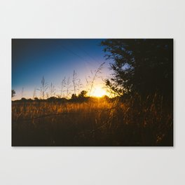 Last Light Canvas Print