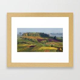 Swiss Vineyards Framed Art Print