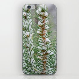 Snow Covered Pines iPhone Skin