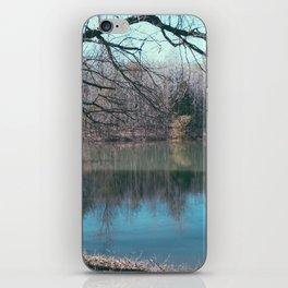 Lake Bed iPhone Skin