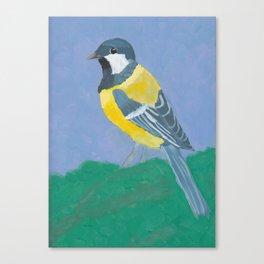Paridae (Great Tit Bird) Canvas Print