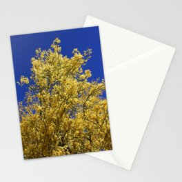 Palo Verde Yellow Blooms Stationery Cards