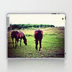 Horses Grazing Laptop & iPad Skin