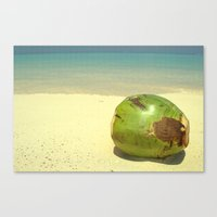coconut wishes Canvas Prints featuring Coconut by Michael S.