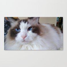 Mon Chat Canvas Print