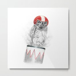CannonbOwl or Cannonball Owl Metal Print