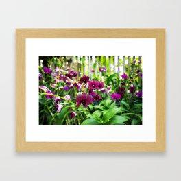 Beautiful Magenta Framed Art Print