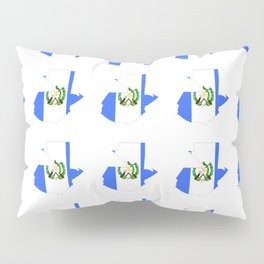 Flag of Guatemala 4-Guatemalan,Mixco,Villa Nueva,Petapa,tropical,central america,spanish,latine Pillow Sham