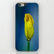 Budding Buttercup  iPhone & iPod Skin