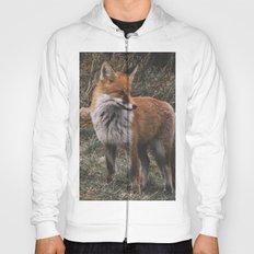 Feelin' Foxy Hoody