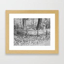 Autumn 4 Framed Art Print
