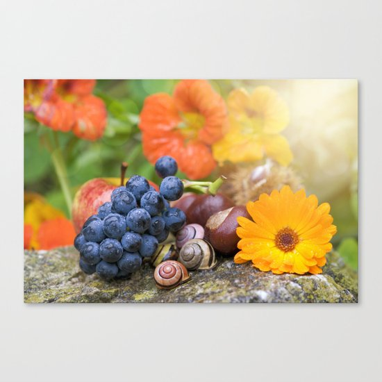 Lovely Autumn Fruits and Flowers in warm Sunlight Canvas Print