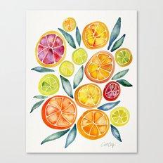 Sliced Citrus Watercolor Canvas Print