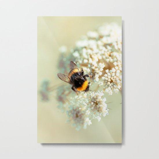 Bumblebee. Metal Print