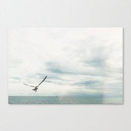 Bird Flies Over the Ocean Canvas Print